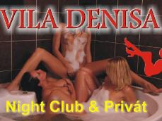 Club a privat Vila Denisa - Obrazek 1